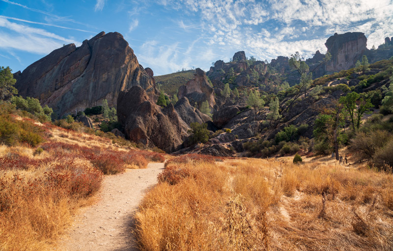 Landscape For Camping In Pinnacles National Park