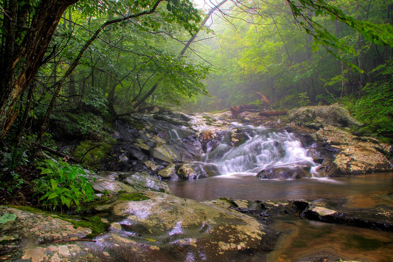waterfall in shenandoah national park
