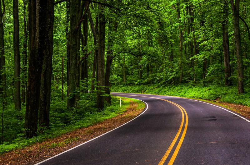 skyline scenic drive in Shenandoah national park