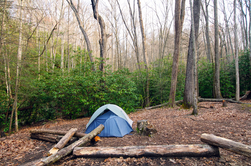 tent camping in the great smoky mountains national park