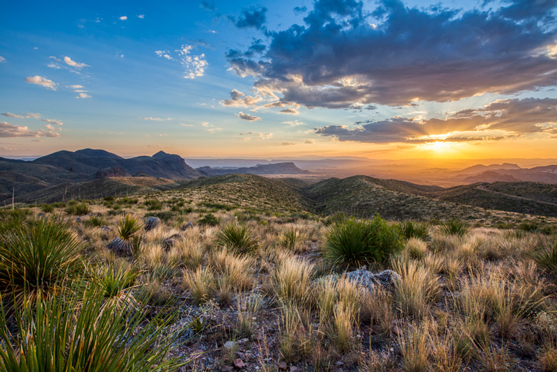 view from the top of sotol vista in big bend national park texas