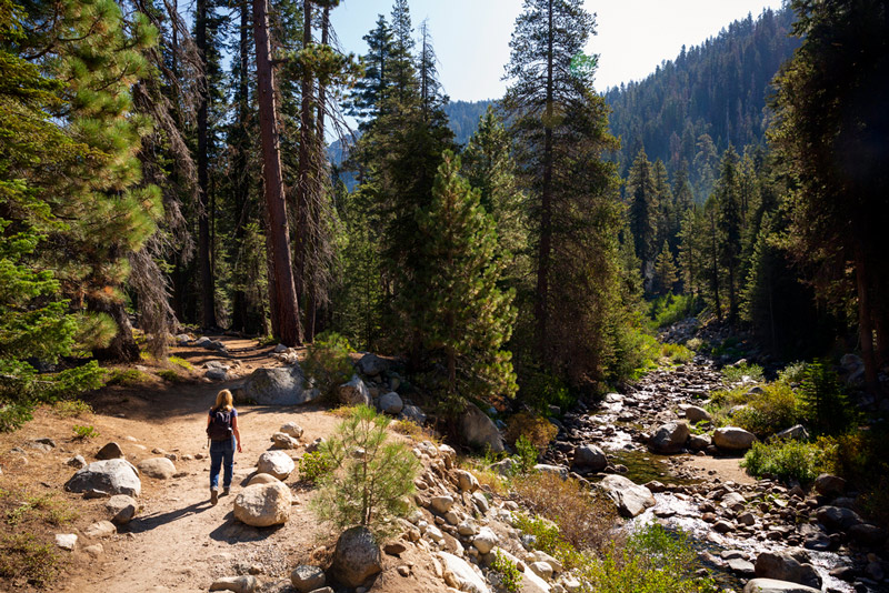 hiking on the Tokopah falls trail to the waterfalls in sequoia national park california
