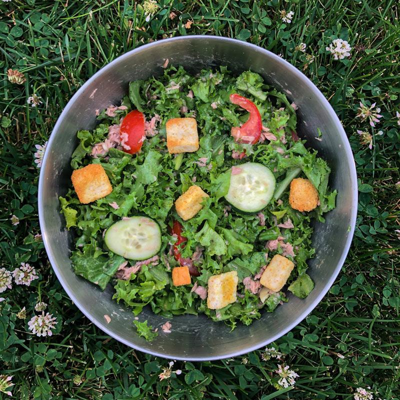 quick and easy tuna salad recipe