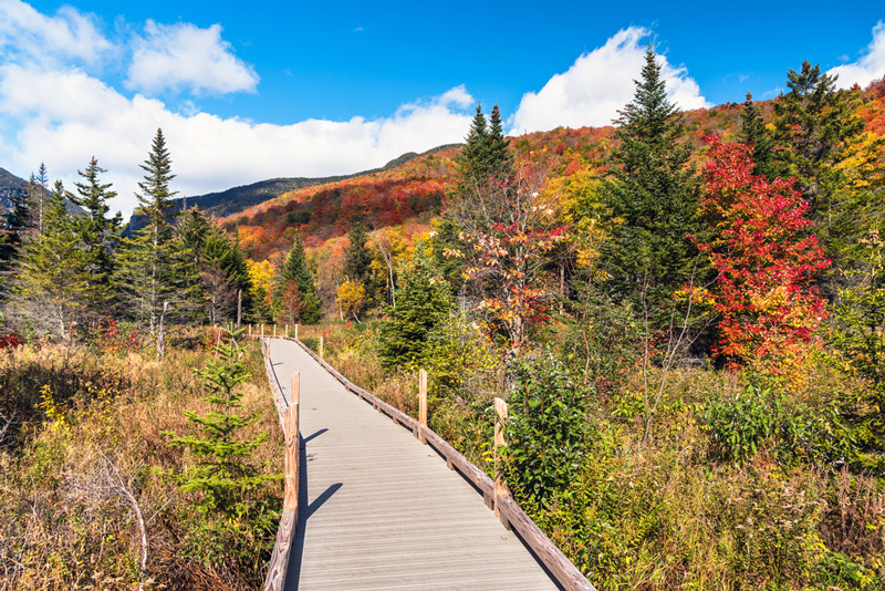 vermont national park hiking trail