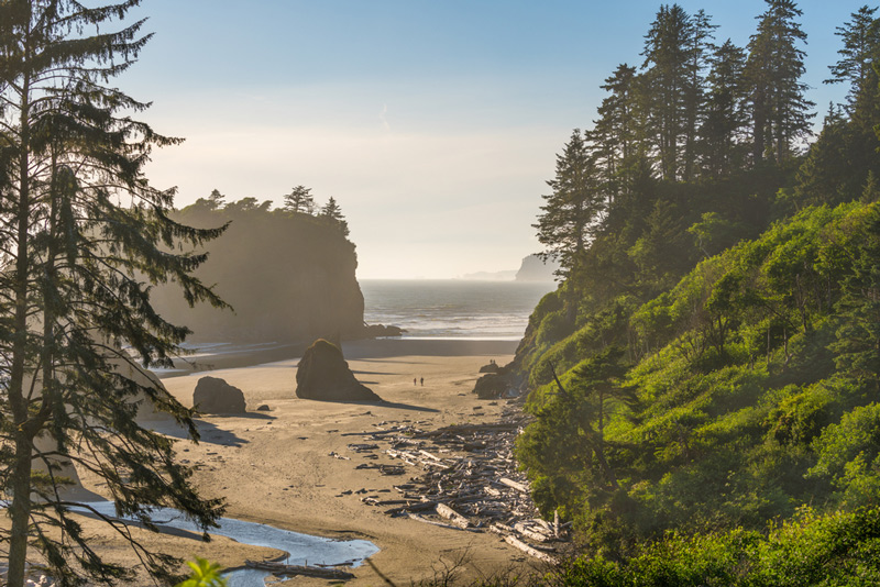 ruby beach at olympic national park in washington