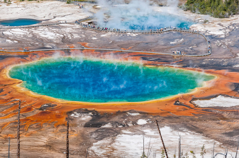 gyser and hydrothermal pool in yellowstone national park