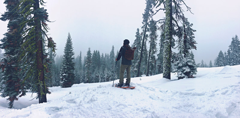 snowshoeing in yosemite national park in the winter