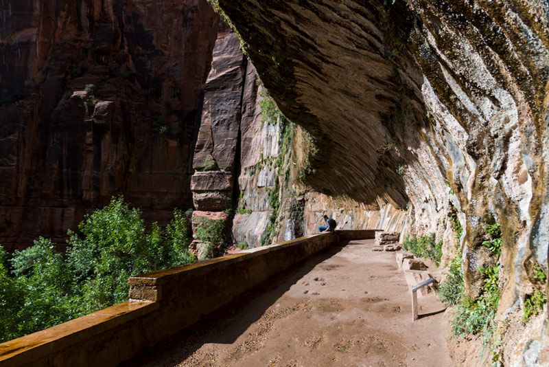 weeping rock day hiking trail in zion national park