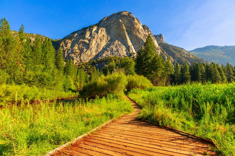 boardwalk hiking trail in zumwalt meadow kings canyon national park