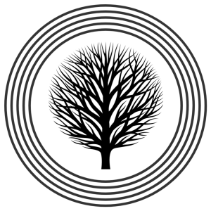 rounded leafless tree inside four concentric circles