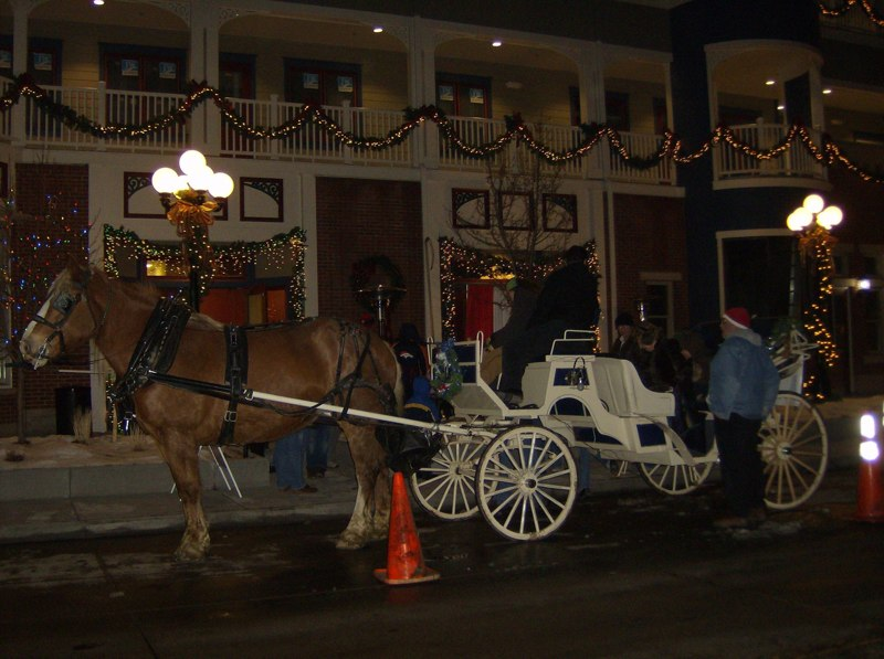 Carriage Rides provided by the Parker Chamber