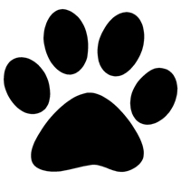 dog paw cat paw