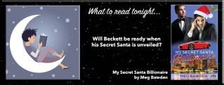 My Secret Santa Billionaire By Meg Bawden