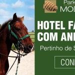 Hotel Fazenda com animais próximo a São Paulo