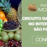 Turismo Rural e o Circuito das Frutas no interior de São Paulo