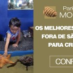 Os melhores passeios fora de São Paulo para crianças