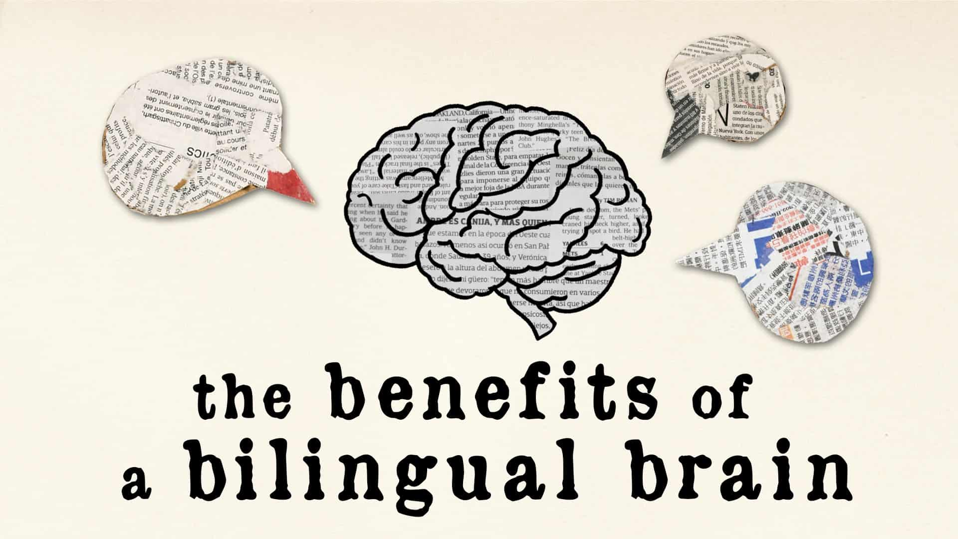 The Bilingual Brain