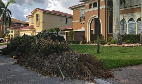 City of Parkland Holds Special Meeting for Debris Removal Expenditure