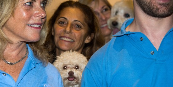 Therapy Dogs that Consoled Parkland Victims Honored by City
