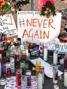 Opinion: Nine Months After Parkland Tragedy, Resident Offers Nine Worthy Discussion Points