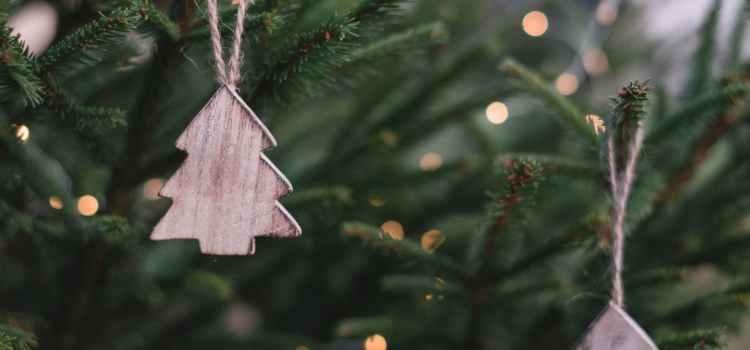 Parkland Announces Annual Christmas Tree Pickup