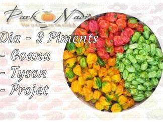Mélange Dia- 3 piments