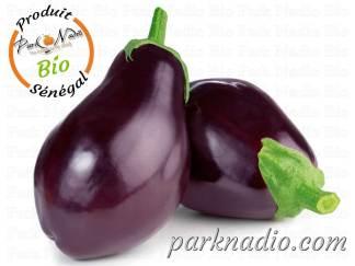 Livraison aubergine Bio