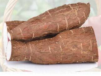 Livraison de manioc à Dakar