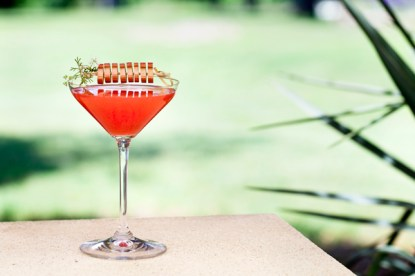 strawberry_rhubarb_martini(katiepark)small