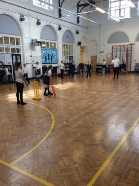 Cricket Y5-3