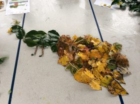Forest School Fun for Year 3!