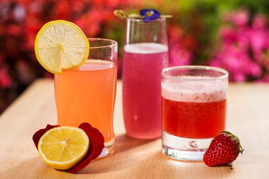 Refreshing drinks at the International Flower & Garden Festival in Epcot