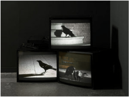 Douglas Gordon, Looking Down With His Black, Black Ee, 2008.