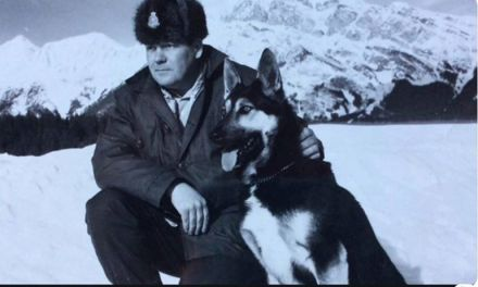 Alfie Burstrom