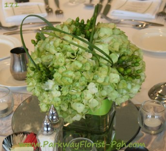 center pieces 171