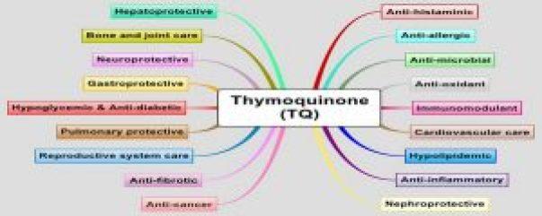 Timokinonun etkileri