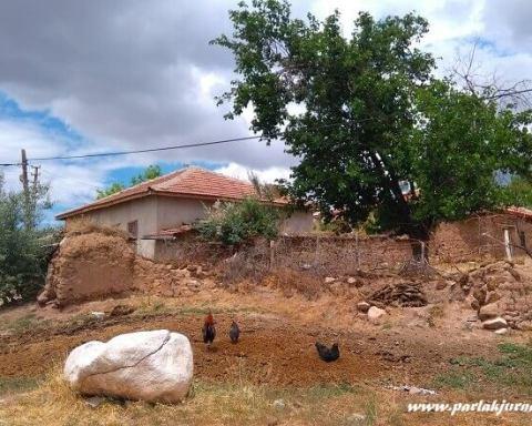 köy evi ve yeni yıl