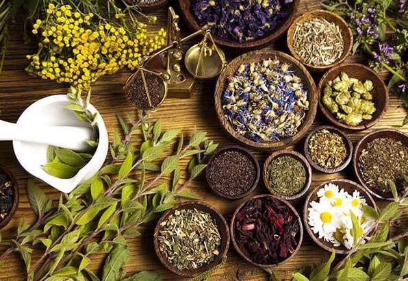 Fitoterapi bitkiler