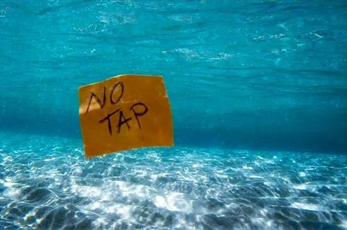 #NoTap. Fermiamo il gasdotto e la mattanza degli ulivi, la nostra battaglia in Puglia non si arresta