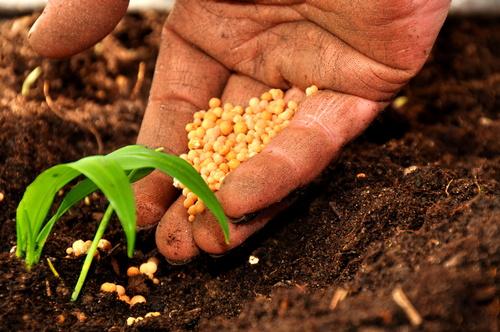 Agricoltura: Gallinella (M5S), domanda unica 2017 fondi Ue al 91%