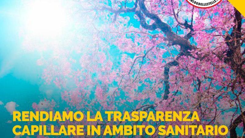 Sanità' Trasparente: dopo parole di Cantone ancora più convinti nostra direzione