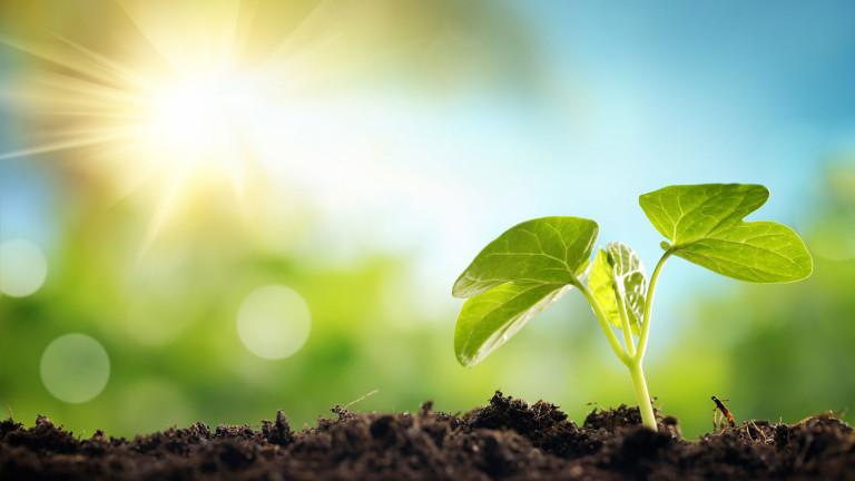 Ambiente: Con Di Maio pronti a svolta green, decisivi accordi con imprese per riconversione ecologica