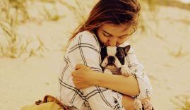 Playas den Chile que permiten mascotas