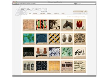 natural curiosities art catalog