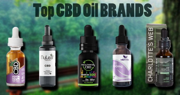 A Review on The Top CBD Oils Brands & Their Benefits