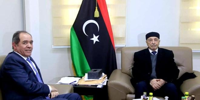 فخامة رئيس مجلس النواب يلتقي وزير الخارجية الجزائري بالقبة