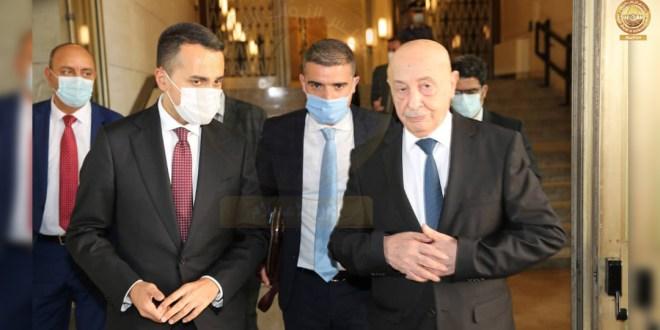 فخامة رئيس مجلس النواب يلتقي وزير الخارجية الإيطالي