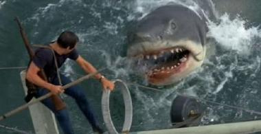 Jaws-pic 3