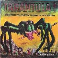 8mm tarantula