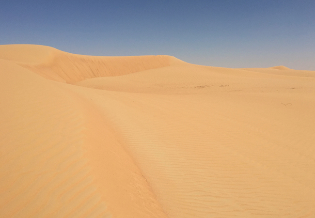 The beautiful Marquab desert and reserve.